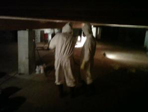 Mold Remediation in Sealed Crawl Space