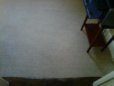 Looped Wool - After